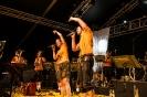 25. Juni 2017   Musikfest Frauenzell_12