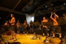 25. Juni 2017   Musikfest Frauenzell_9
